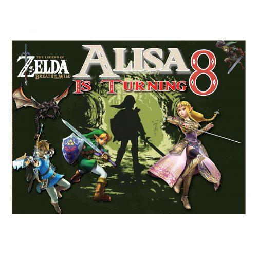 Zelda Backdrop